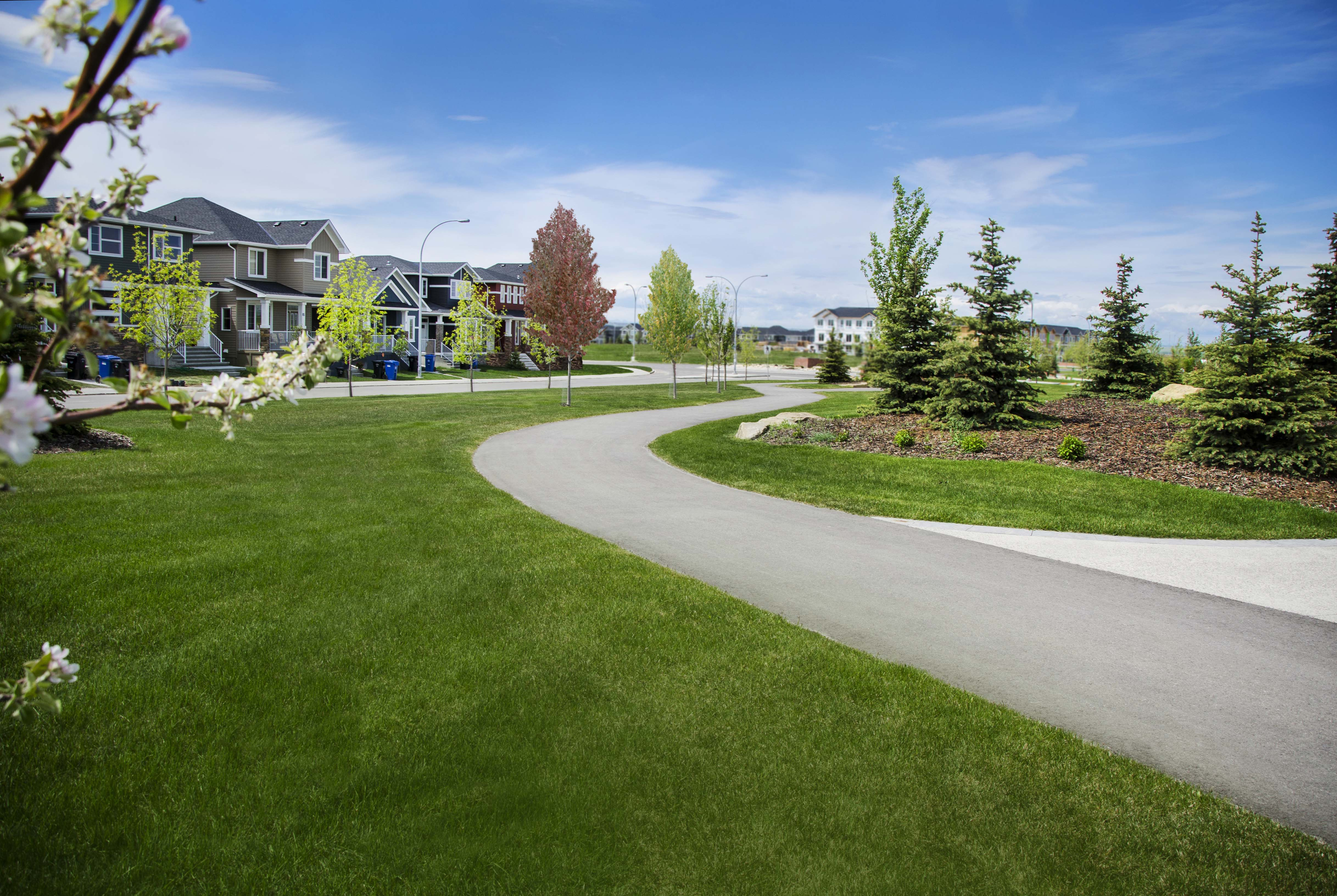 Walking path with fresh cut grass in Crestmont Calgary