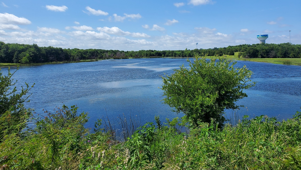 Nelson Lake vista
