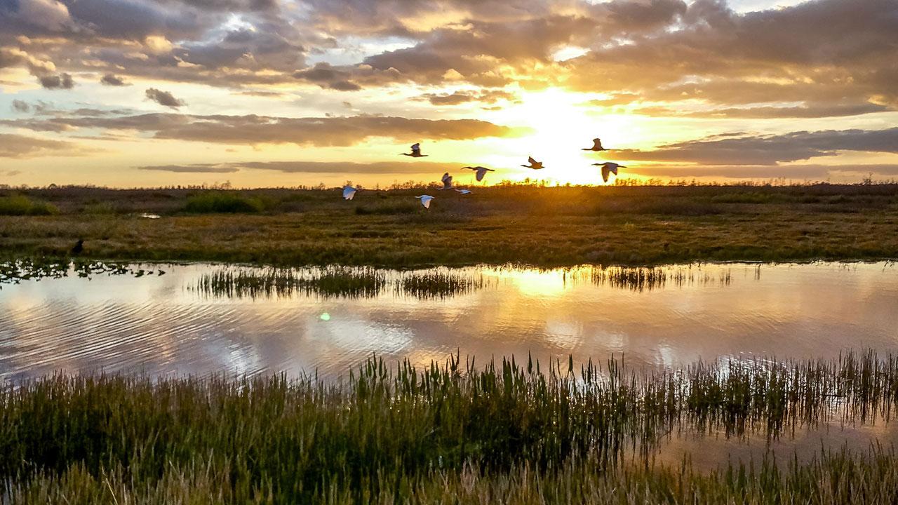 Beautiful wetlands in Manitoba