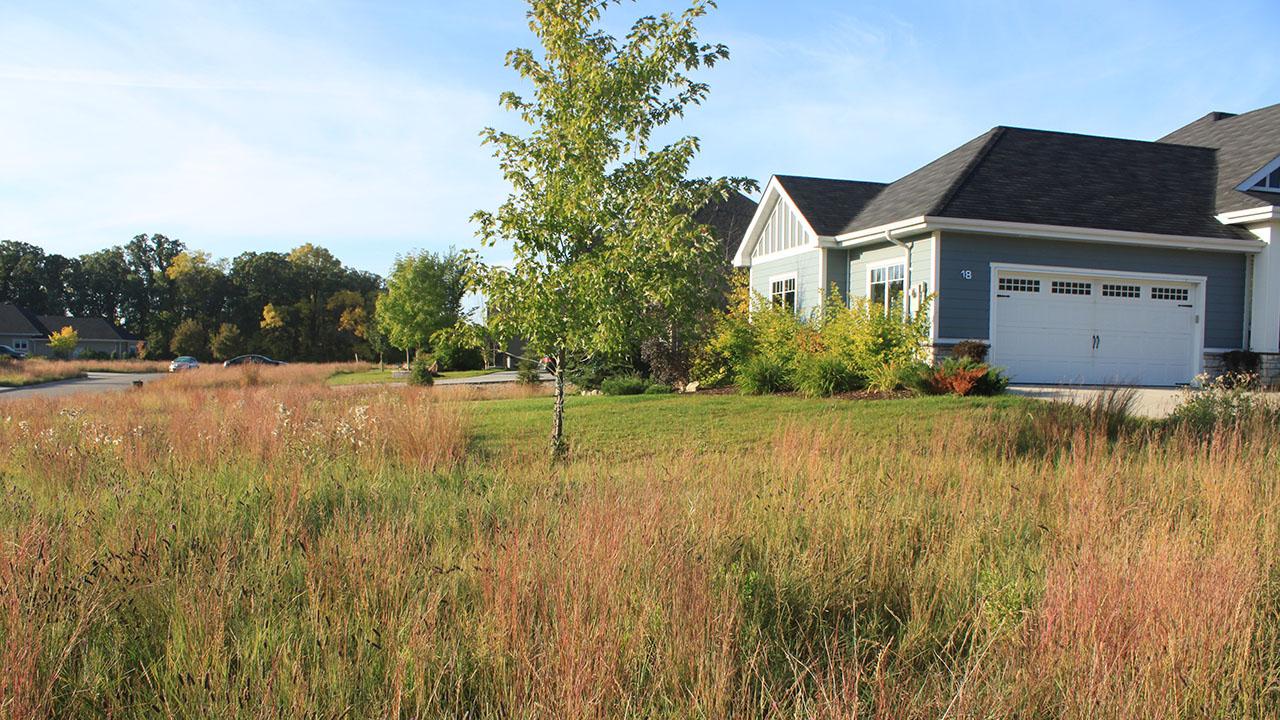 Qualico Communities Winnipeg - Assiniboine Landing - Landscaping1