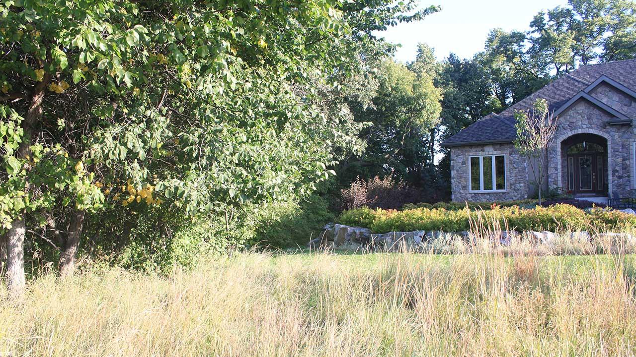 Qualico Communities Winnipeg - Assiniboine Landing - Landscaping2